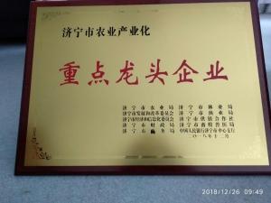 祝贺济宁援杨渔业被评为济宁市农业产业化龙头企业