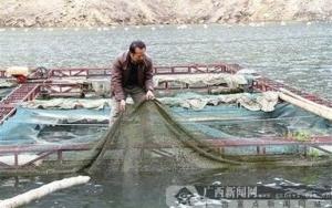湖泊捕捞销售
