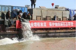 上海供应增殖放流鱼苗