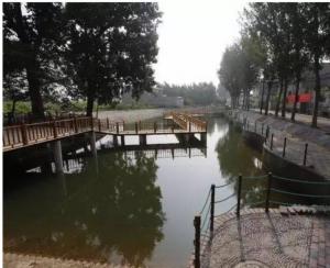 上海美丽乡村环境治理