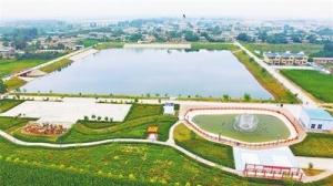 上海农村坑塘治理